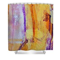 Glory 2 Shower Curtain