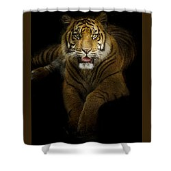 Shower Curtain featuring the photograph Glory by Cheri McEachin