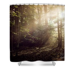 Glory Comin Down Shower Curtain by Brenda Bostic