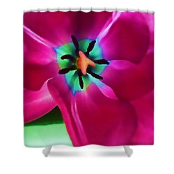 Shower Curtain featuring the photograph Glory Hallelujah by Roberta Byram