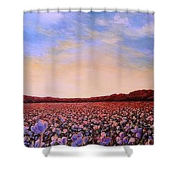 Glory Of Cotton Shower Curtain by Jeanette Jarmon