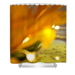 Glow Shower Curtain by Bobby Villapando