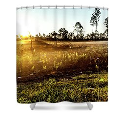 Shower Curtain featuring the photograph Glow by Eric Christopher Jackson