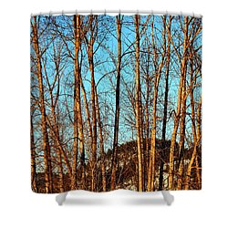 Shower Curtain featuring the photograph Glow Of The Setting Sun by Will Borden