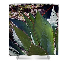 Shower Curtain featuring the photograph Glowing Agave by Phyllis Denton