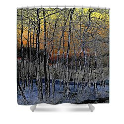 Glowing Aspens At Dusk Shower Curtain