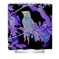 Glowing Cedar Waxwing Shower Curtain