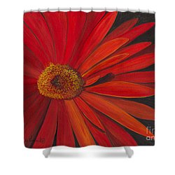 Shower Curtain featuring the painting Glowing Gerber by Phyllis Howard