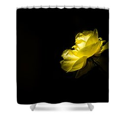 Shower Curtain featuring the photograph Glowing by Jay Stockhaus
