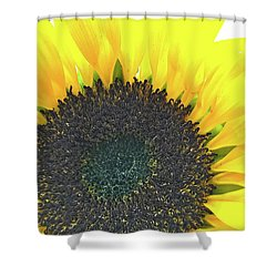 Glowing Sunflower Shower Curtain