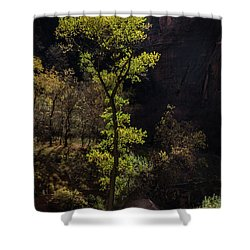Glowing Tree At Zion Shower Curtain