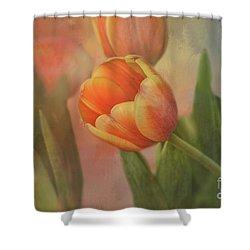 Glowing Tulip Shower Curtain by Joan Bertucci