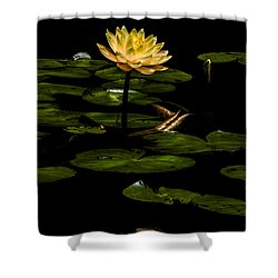 Glowing Waterlily Shower Curtain