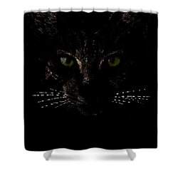 Glowing Whiskers Shower Curtain by Helga Novelli