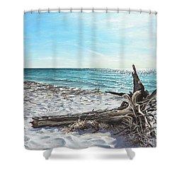 Gnarled Drift Wood Shower Curtain
