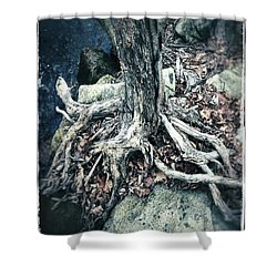 Gnarled Rooted Beauty Shower Curtain
