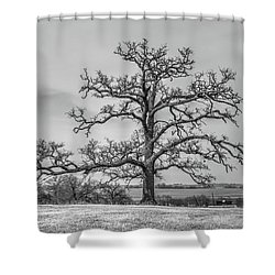 Gnarly Nature Shower Curtain