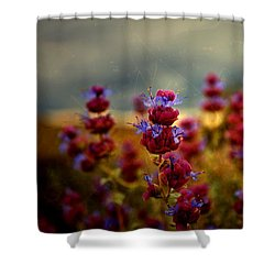 Go Bee Shower Curtain