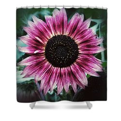 Go Pink Shower Curtain