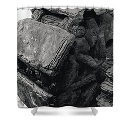 Goat Rock Tractor Tread Jenner California Shower Curtain