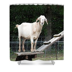 Goat Smile Shower Curtain