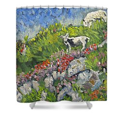 Goats On Hill Shower Curtain