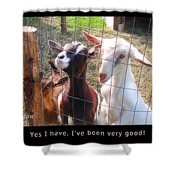 Shower Curtain featuring the photograph Goats Poster by Felipe Adan Lerma