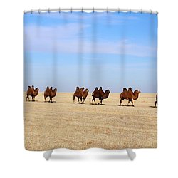 Gobi Camels Shower Curtain by Diane Height