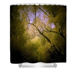 God Answers Shower Curtain