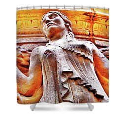 Goddess Of Zex Palace Of Fine Arts San Francisco Shower Curtain