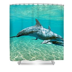 Gods Children Shower Curtain by James Roemmling