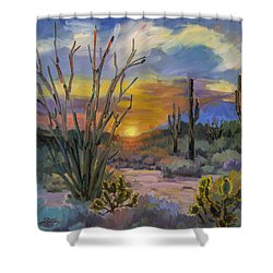 God's Day - Sonoran Desert Shower Curtain by Diane McClary