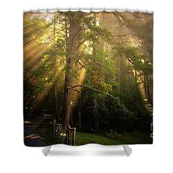 God's Light 2 Shower Curtain by Geraldine DeBoer