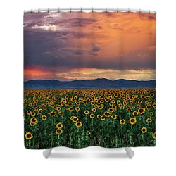 Shower Curtain featuring the photograph God's Sunflower Sky by John De Bord