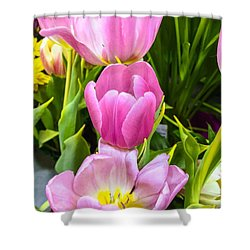 God's Tulips Shower Curtain