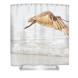 Godwit Over The Ocean Shower Curtain