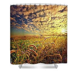 Going To Sleep Shower Curtain by Phil Koch