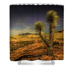 Shower Curtain featuring the photograph Gold Butte From The Joshua by Janis Knight