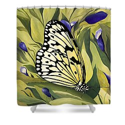 Gold Butterfly In Branson Shower Curtain