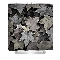 Gold Copper And Silver Leaves 1 Shower Curtain