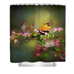 Gold Finch And Blossoms Shower Curtain
