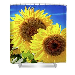 Shower Curtain featuring the photograph Gold by Greg Fortier
