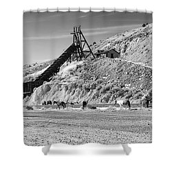 Gold Hill Shower Curtain