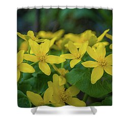 Shower Curtain featuring the photograph Gold In The Marsh by Bill Pevlor