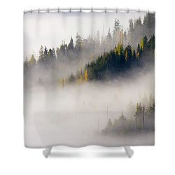 Gold In Them Hills Shower Curtain by Mike  Dawson