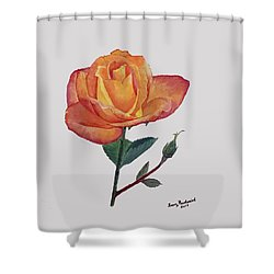 Gold Medal Rose Shower Curtain