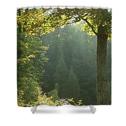 Gold On Green Shower Curtain