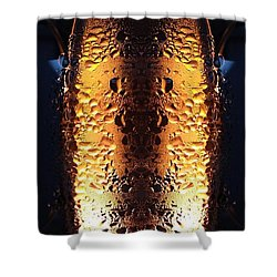 Gold Rules Shower Curtain