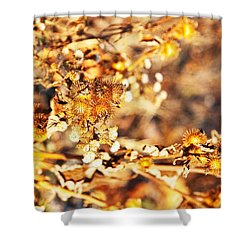 Gold Rush Shower Curtain