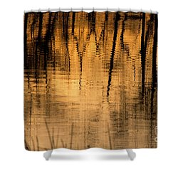 Golden Abstract Shower Curtain by Shevin Childers